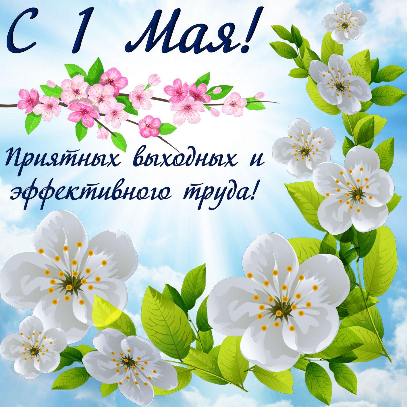 Открытка-с-поздравлениями-на-1-мая-первое-мая-мир-труд-май-3316